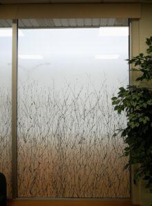 Decorative Glass Films Add Privacy & Decor to Big Rapids Orthopedics in Big Rapids, Michigan 2