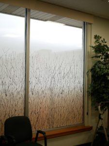 Decorative Glass Films Add Privacy & Decor to Big Rapids Orthopedics in Big Rapids, Michigan 4