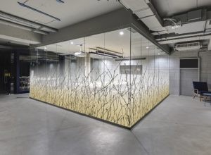 Transform Western Michigan Glass Panels by Retrofitting Decorative Window Films