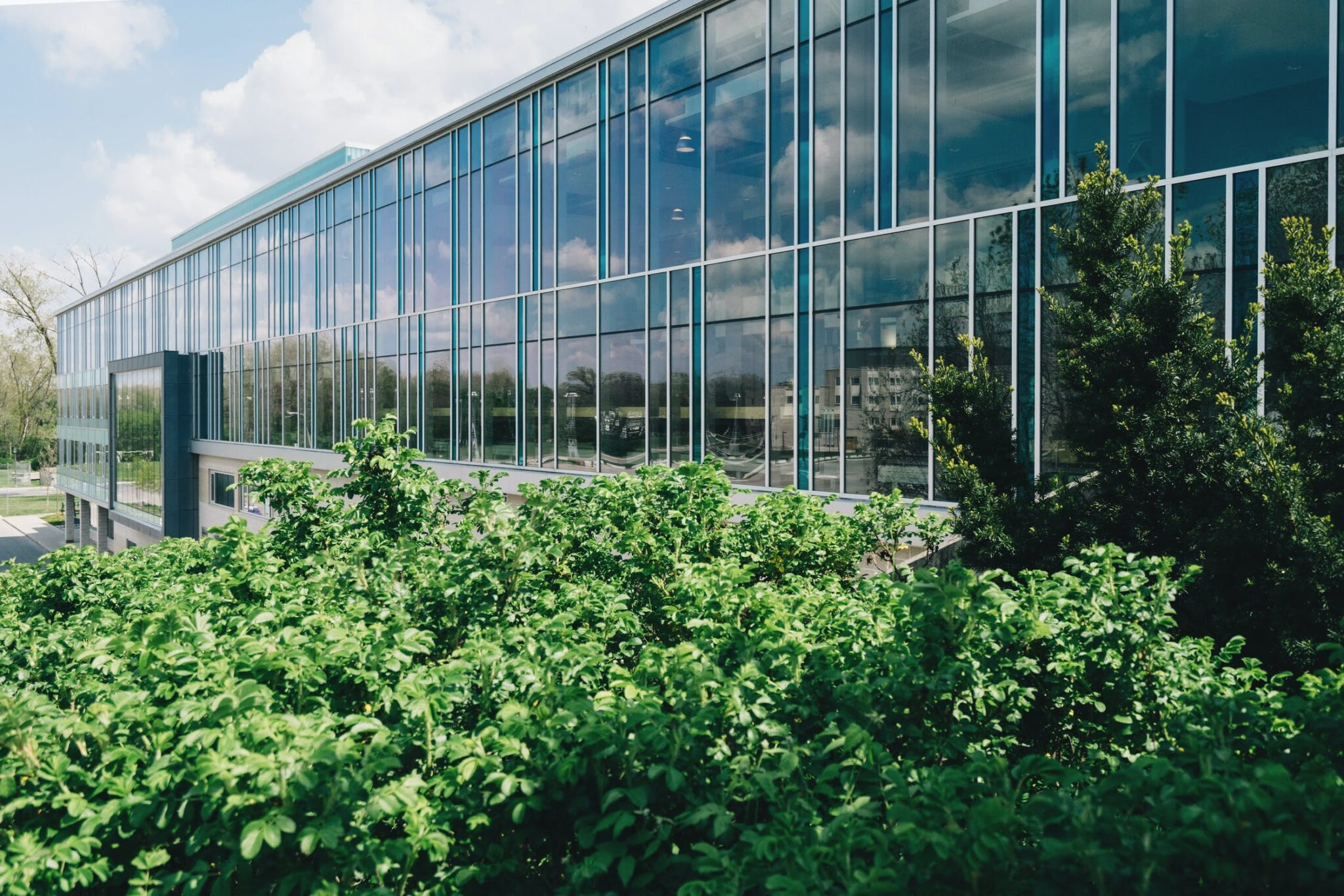 2021 Construction Trends Facilitated By Commercial Window Films - Commercial Window Film in Grand Rapids, Michigan
